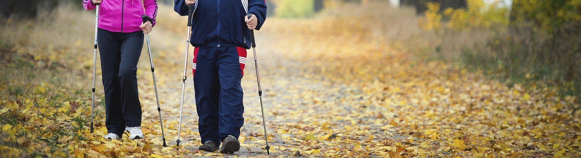 aktivt-seniorliv-og-hojskole-norgaards-hojskole-vandring